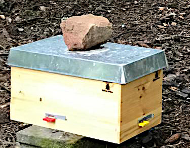 Miniplus 4er Belegstelle Dunkle Biene Bayern